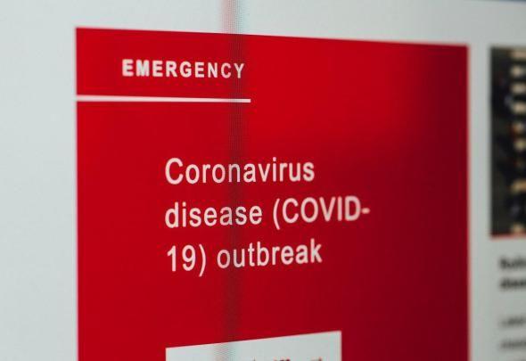Magiczny Ogród w czasie pandemii COVID-19
